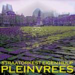 CD_2010_Pleinvrees